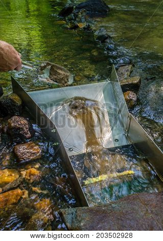 Sluice box being fed mineral rich material. Fun and adventure in this outdoor recreational activity of prospecting and panning for gold and gemstones.