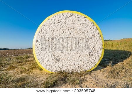 A round cotton bale in the field on a fall morning in north Mississippi.