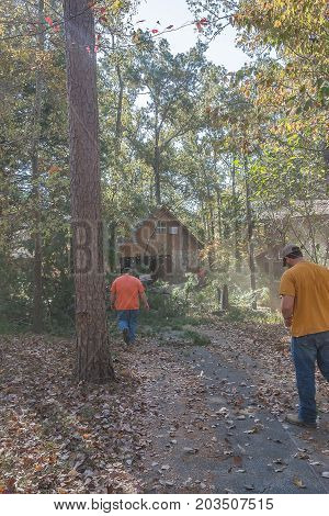 Bruce, MS USA - November 1 2017-  Dust rising from the  impact of a pine tree seconds after it was brought down. These tree trimmers ready themselves to cut the tree up and remove its debris from the property.