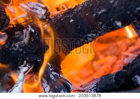 flames of fire from charcoal as background