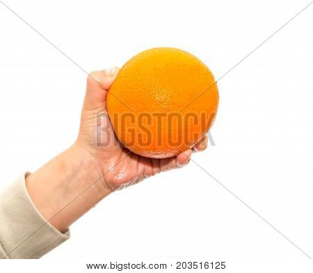orange in a hand on a white background