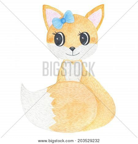 Watercolor hand painted cute forest fox isolated on white background. Fauna animal illustration