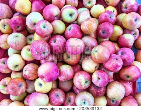 Pile of colorful organic apples in the market