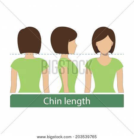 Hair length for haircuts and hairstyles - chin length. Vector.
