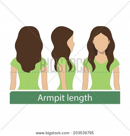 Hair length for haircuts and hairstyles - armpit length. Vector.