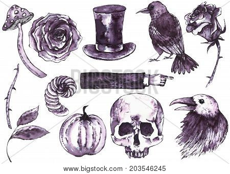 Watercolor hand drawn Halloween set. Black and white holiday design elements isolated on white background. Pumpkin, skull, vampire hat, horns, roses, amanita, raven, vintage hand