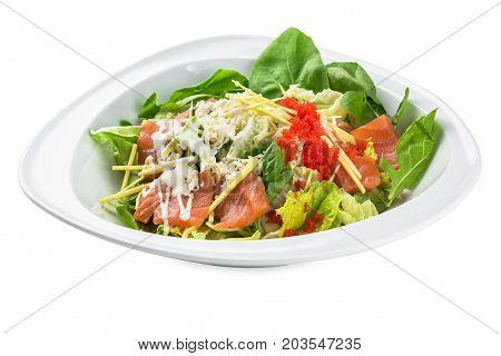 Saki Kunsei Sarada Salad Plate - Isolated On White
