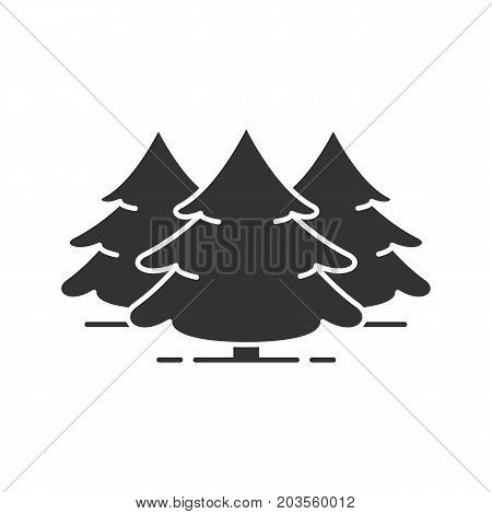 Fir forest glyph icon. Forestry silhouette symbol. Spruces. Christmas trees. Negative space. Vector isolated illustration