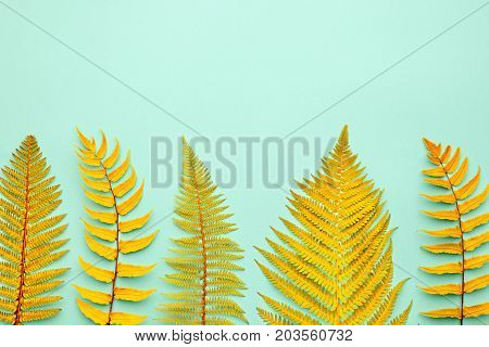Autumn Arrives. Fall Leaves Background. Fern Leaf Fashion Design. Art Gallery. Minimal. Yellow fern Leaf on Pink. Autumn fall fashion. Vintage Concept