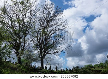 Silhouette Of Graveyard And Cloudy Sky On The Background