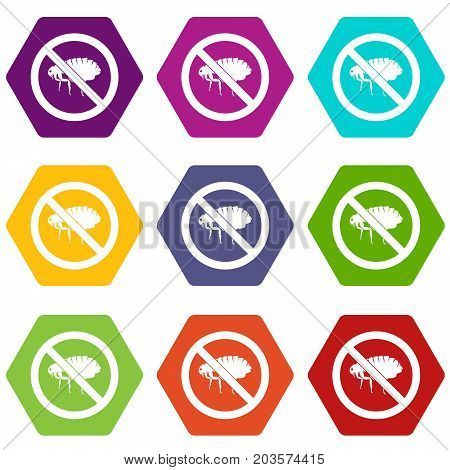 No flea sign icon set many color hexahedron isolated on white vector illustration