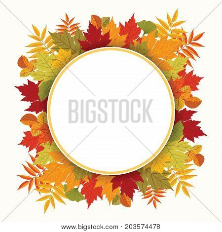 Autumn composition with leaves of maple, rowan, aspen and ginkgo. Round label with shadow effect. Colorful card template. Copy space. Vector illustration.