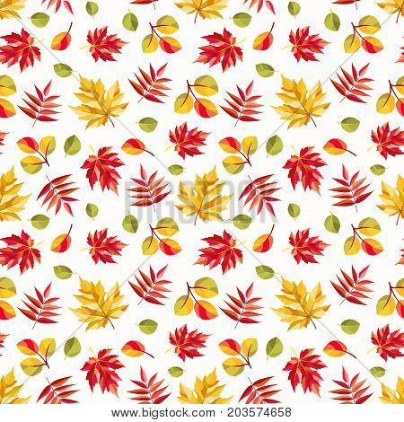 Autumn pattern with colorful leaves of maple, aspen and rowan. Seamless ornament for fall season theme. Vector illustration.
