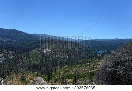 Sequoia And Kings Canyon National Park, California, Usa