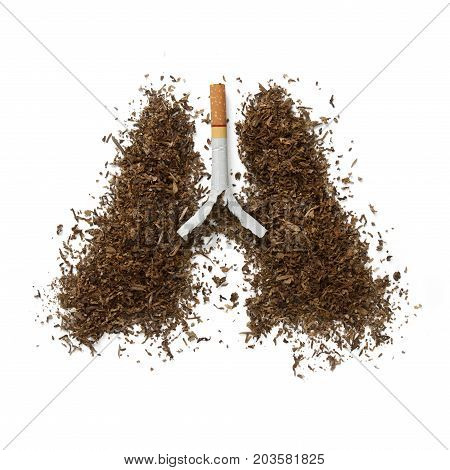 The dangers of smoking concept with lung made of cigarette.