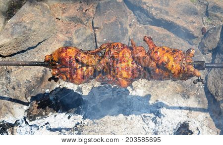 chicken grilled on an outdoor fireplace southern Bohemia Czech Republic