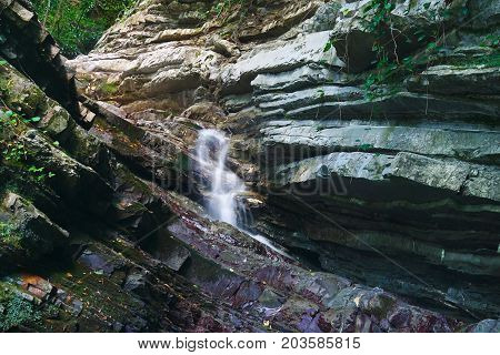 Forested rocks overgrown with ivy and moss with a waterfall flowing down