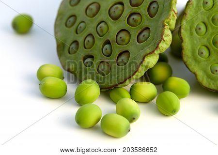 Lotus Seed Close Up