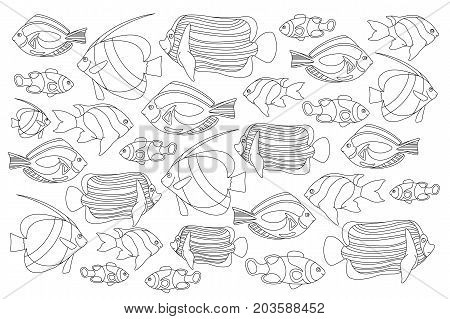 Outlined coral fishes horizontal coloring page. Tropical fish coloring card. Marine life coloring book. Black and white coral fishes for coloring. Sea animals drawing. Aquarium fish clipart set