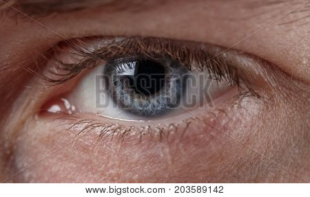 Macro image of human beautiful grey eye. Human eye close up. Reflection on the surface of the eye. Selective field of focus.