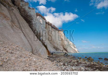 Beautiful Nature of Mons Klint limestone cliffs in Denmark