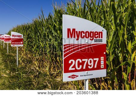 Indianapolis - Circa September 2017: Mycogen Seeds Signage in a corn field. Mycogen Seeds is a subsidiary of Dow AgroSciences and DowDuPont I