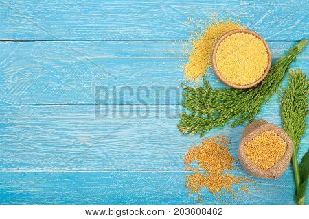 Millet in a wooden bowl, burlap bag and green spikelets on the blue wooden background with copy space for your text. Top view.