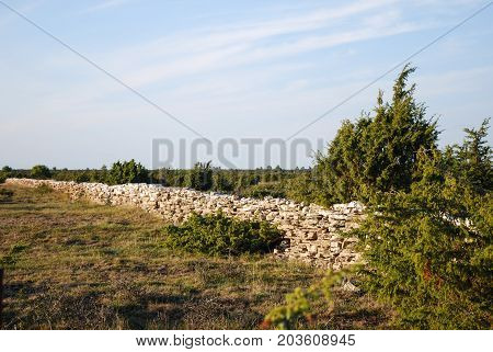 Traditional dry stone wall in the world heritage at the swedish island Oland