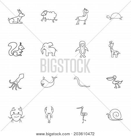 Set Of 16 Editable Zoo Doodles. Includes Symbols Such As Polar Bird, Elephant, Ewe And More
