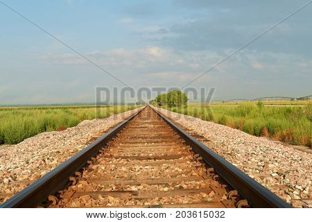 Railway Tracks Disappearing Into The Distance.