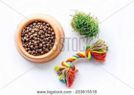 pet care with dry food for pet - dog in plastic bowl on white desk background top view