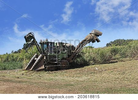 sugar cane harvest season in Cairns Australia