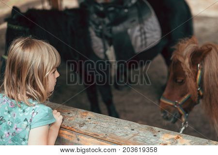 Cute little Caucasian girl looking at a little pony