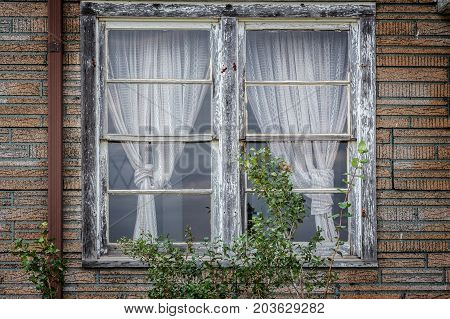 horizontal image of two very old windows with old white curtains set in a red brick exterior wall.