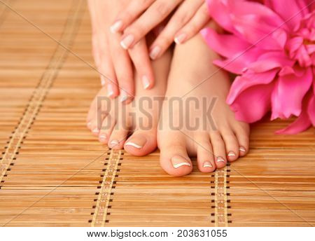 Care for beautiful woman legs with flower .
