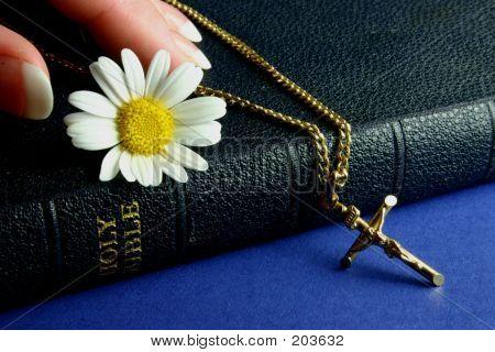 Hand Touching Bible