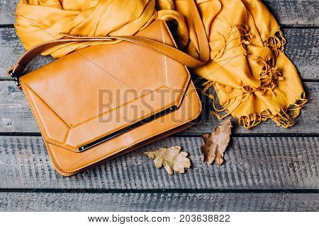 Women's Autumn Clothes. Autumn Female Outfit. Set Of Bag, Accessories - Shoes And Scarf On Wooden Br