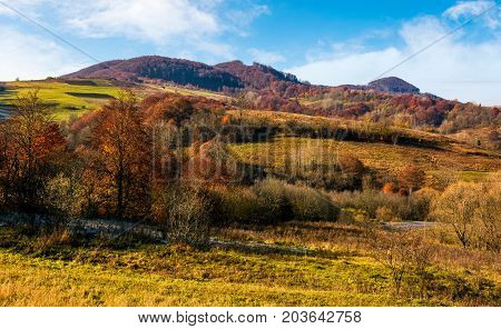 Late Autumn Countryside Landscape