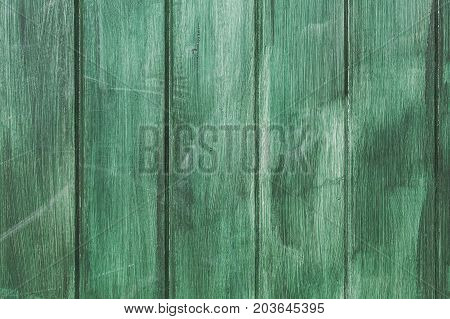 Wood painted in green emerald color background texture