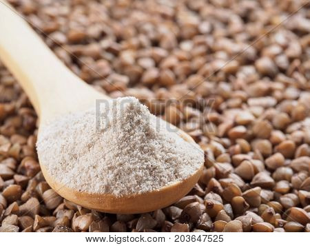 Buckwheat flour in wooden spoon and buckwheat grains. Whole-grain buckwheat flour on buckwheat grains background. Copy space.