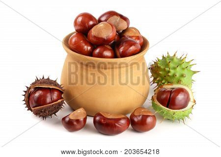 chestnut in a wooden bowl isolated on white background.