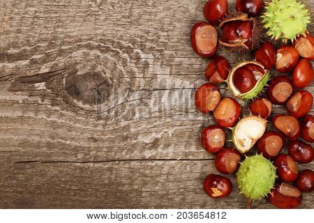 chestnut on old wooden background with copy space for your text. Top view.