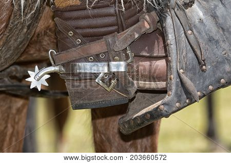 June 10 2017 Toacazo Ecuador: metal spur on leather boot worn at the rodeos