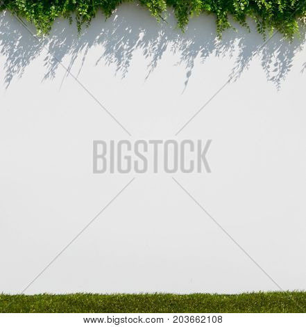 white blur background with grass and shadow