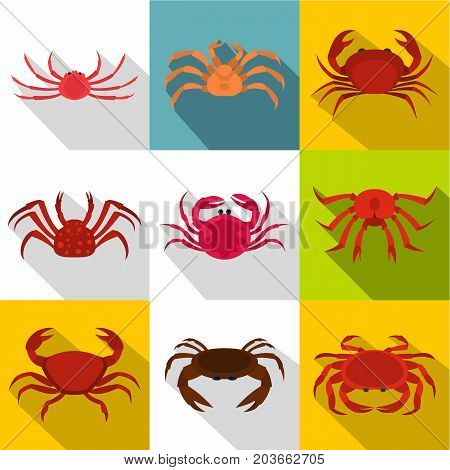 Crab icon set. Flat style set of 9 crab vector icons for web design