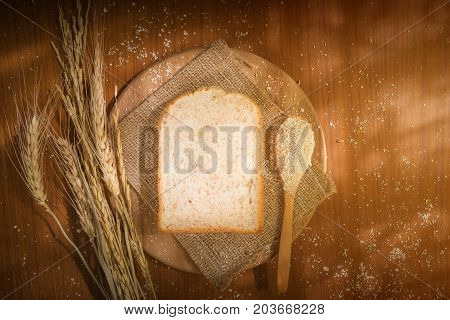 Natural grains (barley buckwheat corn flaxseed millet rice rye sesame spelt sunflower triticale and wheat) sliced bread on wood table with spoon table and rice under warm morning sunlight