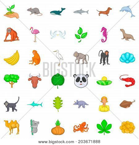 Biotic icons set. Cartoon style of 36 biotic vector icons for web isolated on white background