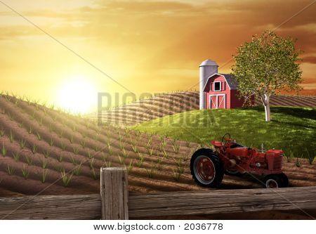 Ochtend op de boerderij