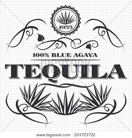 Alcohol drink tequila banner design on notebook page. Vector illustration