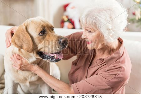 My family. Top view of pleasant mature woman and cute dog are looking at each other with tenderness while lady is hugging her Labrador. Christmas decorations on background